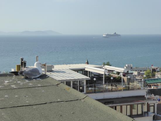 Terrace Guesthouse : Sea of Marmara from break fast table.