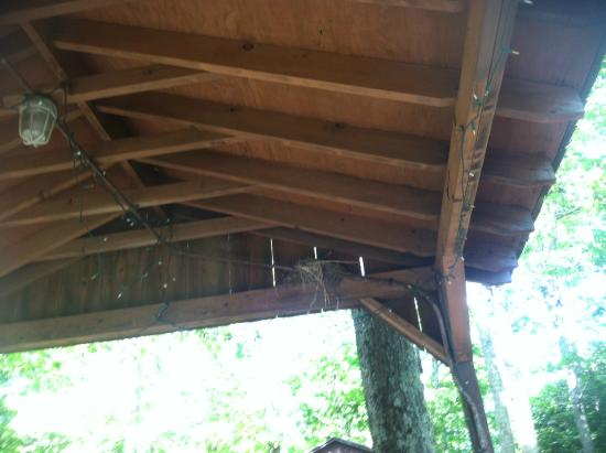 Lewis Mountain Cabins: Robin's nest