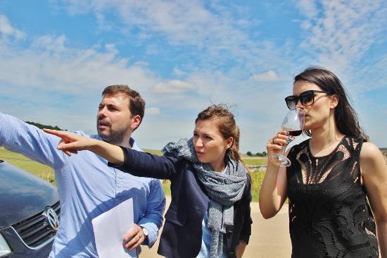 Burgundia Tour: Les climats, les parcelles, les lieux-dits ....