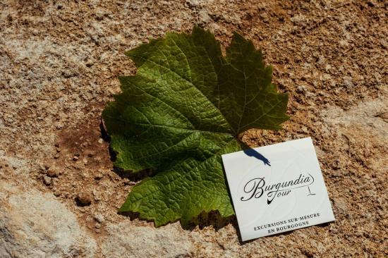 Burgundia Tour