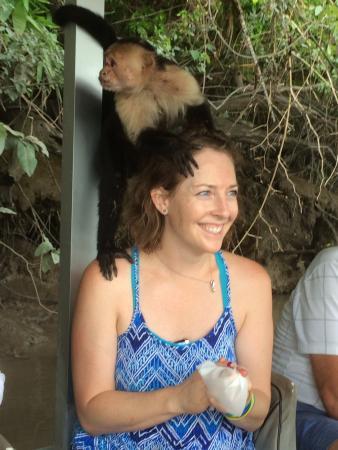 Costa Rica EZ Travel Adventures: photo2.jpg