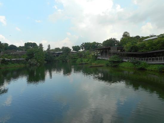 River Safari: Safari Complex