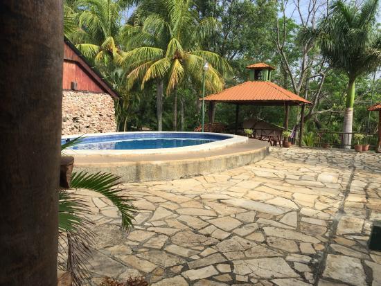 Hotel Selva Verde : Pool