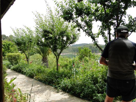 Santa Clara a Velha, Portugalia: garden