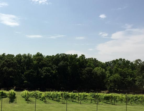 High Hill Farm