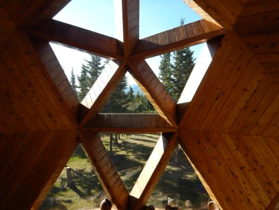 Healy, AK: Inside looking out