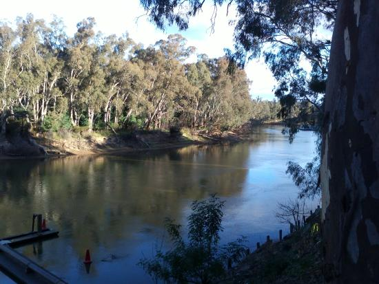 Moama Riverside Holiday & Tourist Park: The mighty Murray River.