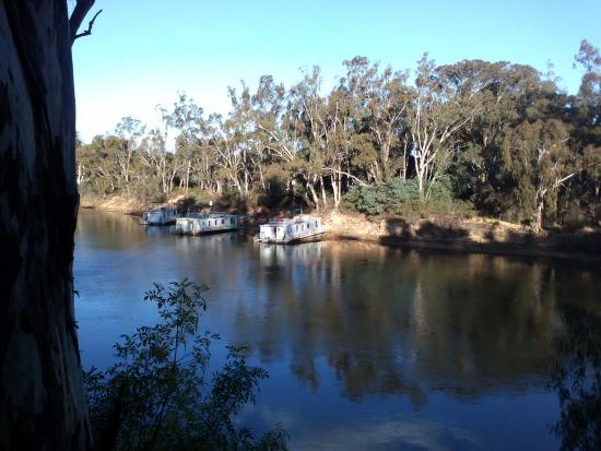 Moama Riverside Holiday & Tourist Park: Views from the riverfront cabins.