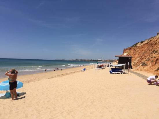 Фотография Algarve Gardens
