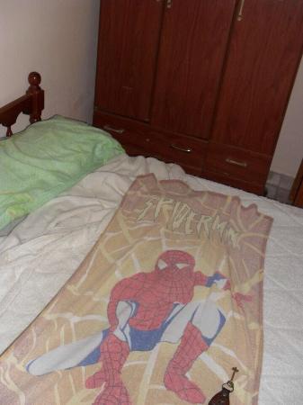 Hotel San Martin: El toallón que ofrecen. Vergonzoso