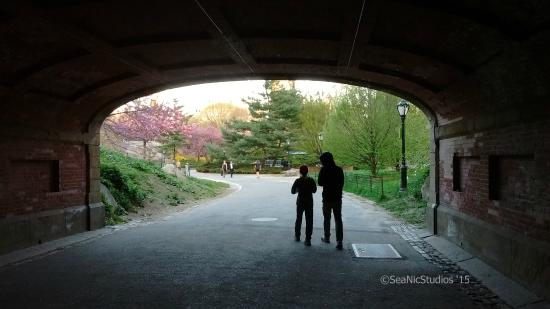 Relax on a walk through Central Park - my youngest\'s favorite part ...
