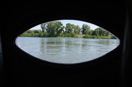 Chambre du capitaine vue hublot picture of chambres d for Avignon chambre d hotes