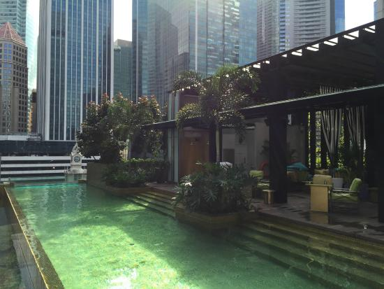 Pool And Roof Top Bar Picture Of So Sofitel Singapore Singapore Tripadvisor