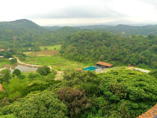 Outdoor swimming pool picture of taj madikeri resort - Resorts in madikeri with swimming pool ...