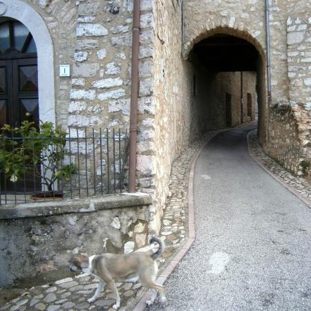 Agriturismo Roccagelli: Gironzolando per le vie del borgo di Meggiano (Vallo di Nera PG)