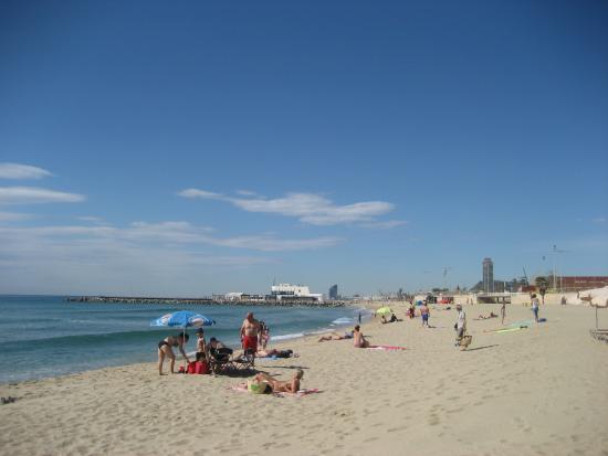 Nova Mar Bella beach: fotografía de Playa Nova Mar Bella, Barcelona - TripAdv...
