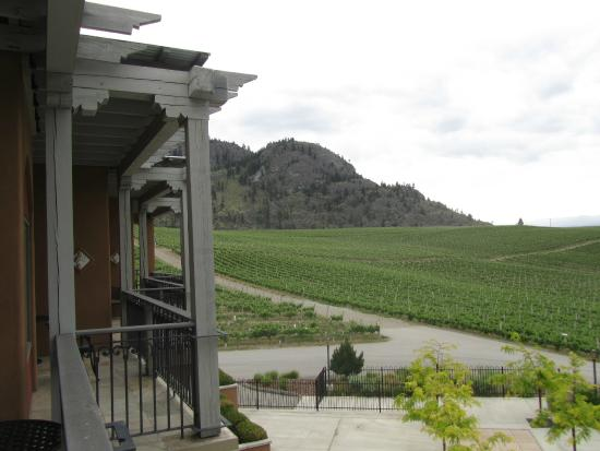 Burrowing Owl Estate Winery Guest House: View from the second floor suite