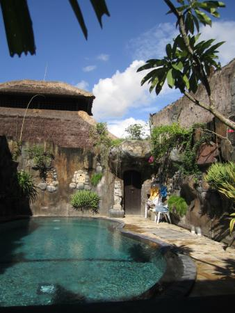 Agung & Sue Watering Hole II: Pool