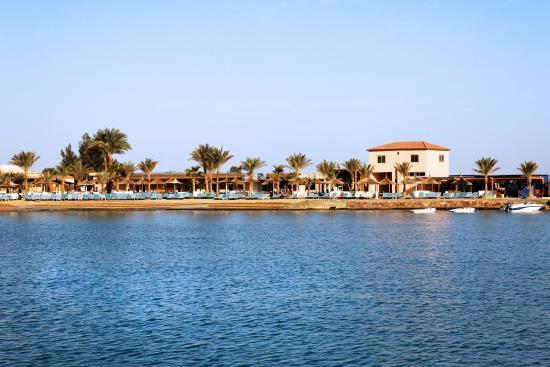 Aqua vista hurghada egypt resort reviews photos price comparison tripadvisor for Aqua vista swimming pool aurora co
