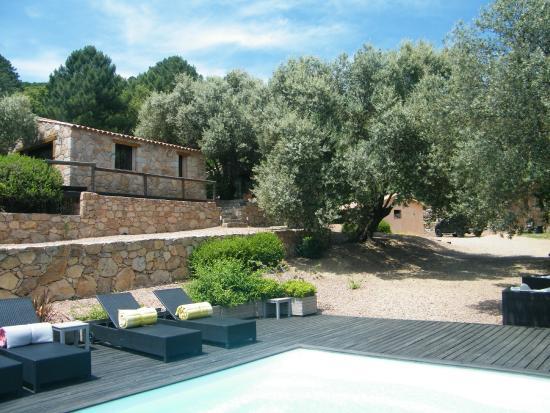 Les Jardins de Mathieu B&B (Corsica/Porto-Vecchio): Prezzi ...