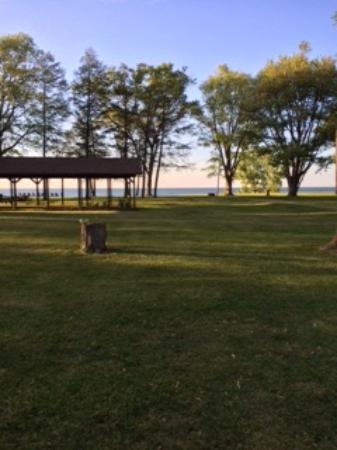 Firefly Beach Resort: View from our camp site