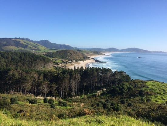 Bream Head Coast Walks: Whangare Heads