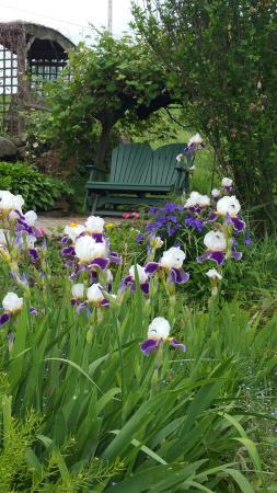 Garden Gate Get-A-Way Bed & Breakfast: Cozy couples garden spot