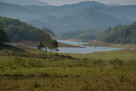 Kerala House: Periyar Tiger Reserve