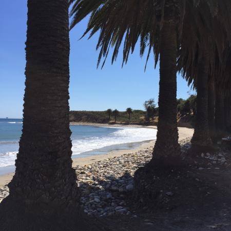 Refugio State Park and Beach: La plage