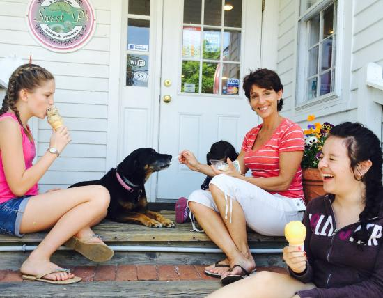 Essex, CT: The dog can't be left out