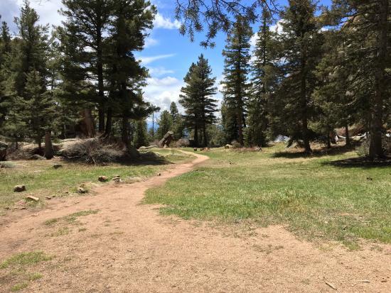Sedalia, Colorado: photo6.jpg