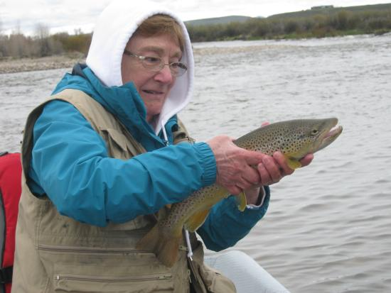 Teton Scenic Floats and Fly Fishing: Debbie's 17 inch Brown