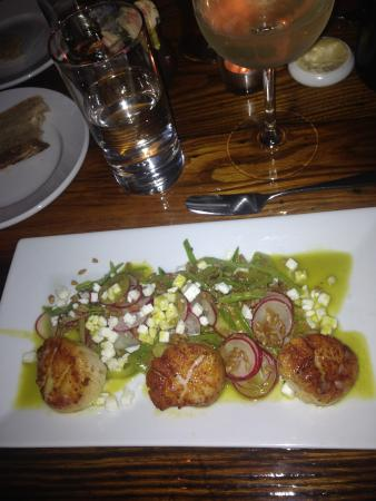 The Tailor and The Cook : Scallops dish