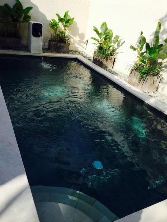 Pool - The Club Villas Seminyak Photo
