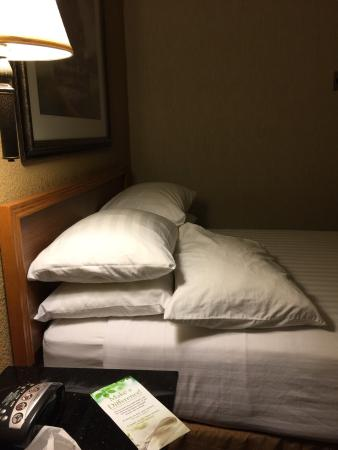 Drury Inn & Suites San Antonio Airport: photo0.jpg