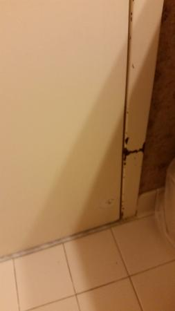 Wingate by Wyndham DFW / North Irving: Just a example of what the rest of the bathroom door frame looked like.