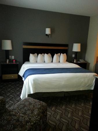 Comfort Inn & Suites Fort Saskatchewan: One Bedroom King Suite - Queen bed in main room