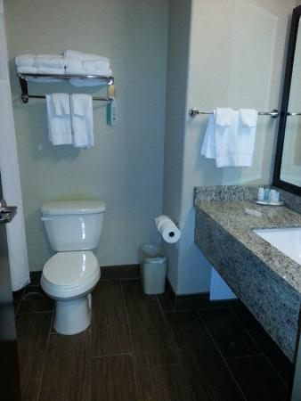 Comfort Inn & Suites Fort Saskatchewan: One Bedroom King Suite - Bathroom
