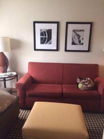 Embassy Suites by Hilton Detroit Metro Airport: photo1.jpg