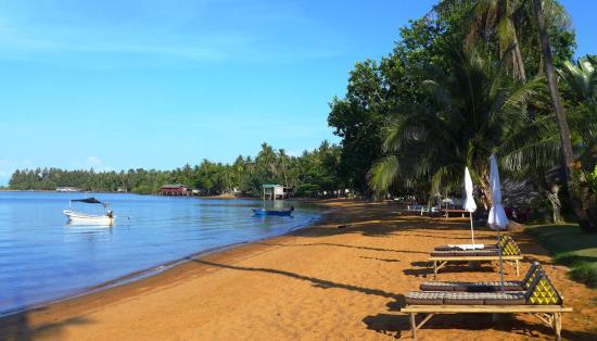 Amber Sands Beach Resort: Amber Sands Beach