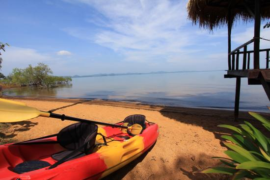 Amber Sands Beach Resort: Or how about kayaking?