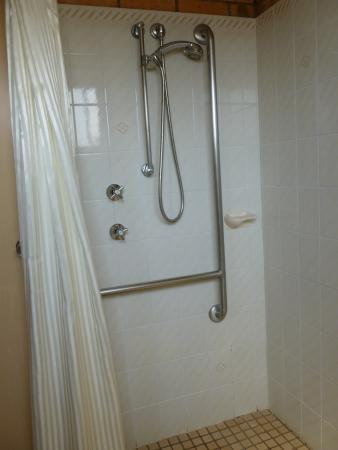 رويال بالمز موتور إن: Disability Shower