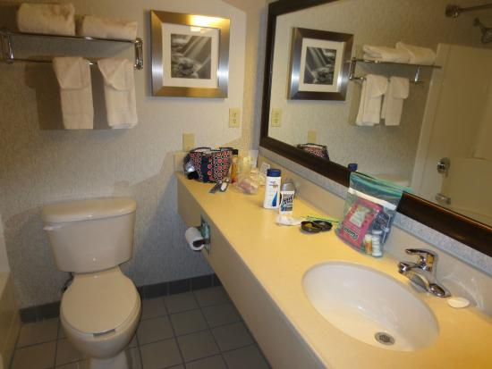 Comfort Inn & Suites Market Place Great Falls: bathroom, reasonably spacious