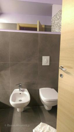 Da Vinci Bathrooms 28 Images Small Bathroom Remodel Greenwood Village Davinci Davinci