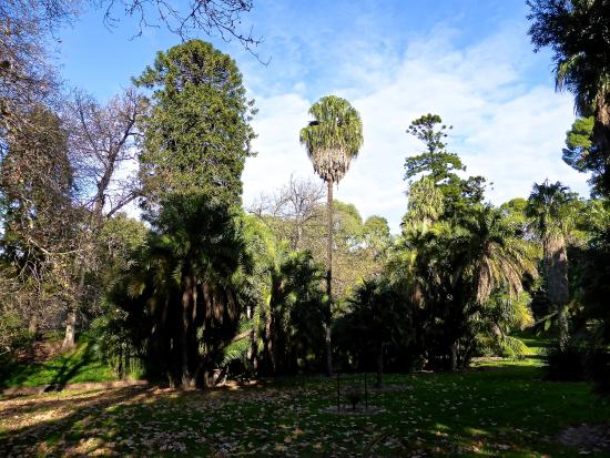 Botanic Park (Tainmundilla)