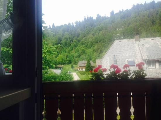 Hotel Silberfelsen: Room with a view
