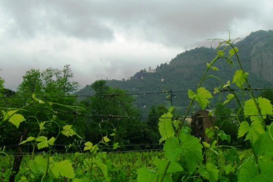 Vittorio Veneto, Italy: Santuario tra nuvole e viti (23maggio2015).