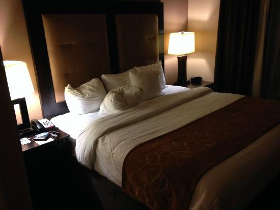 Comfort Suites Buda – Austin South Hotel: Bed