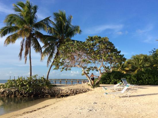 Coral Bay Resort: Beach area