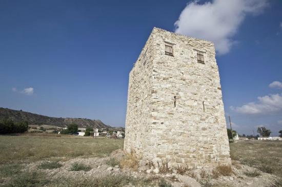 Alaminos, Kypros: koulas